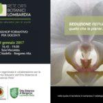 workshop-19-gennaio-1-768x541